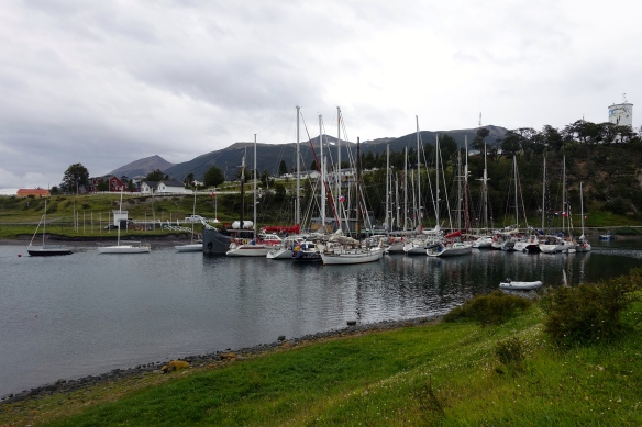 Puerto Williams - Port