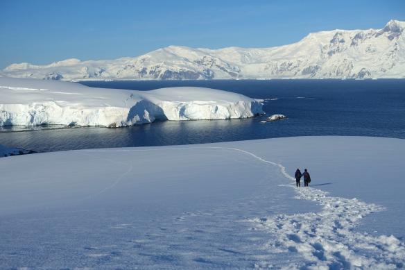 Venus - Omega Island - Archipel Melchior - Antarctique