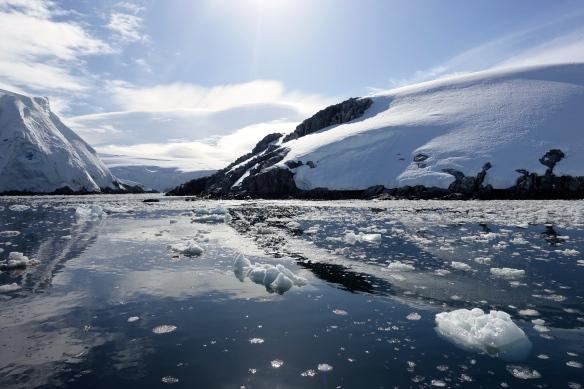 Venus - Omega Island - Arichpel Melchior - Antarctique
