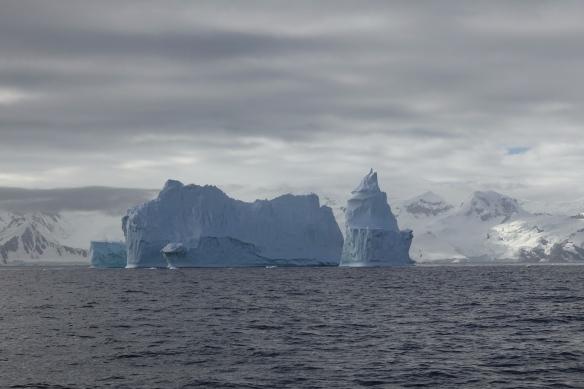 Venus - Gerlache - Iceberg - Antarctique