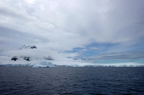 Venus - Brabant Island - Antarctique