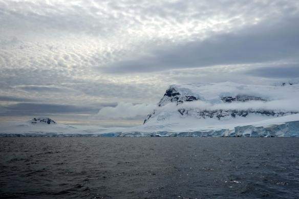 Venus - Island Brabant - Antarctique