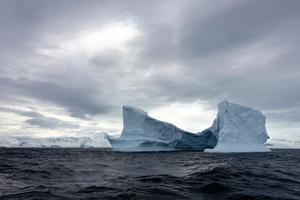 Venus - Gerlache - Antarctique