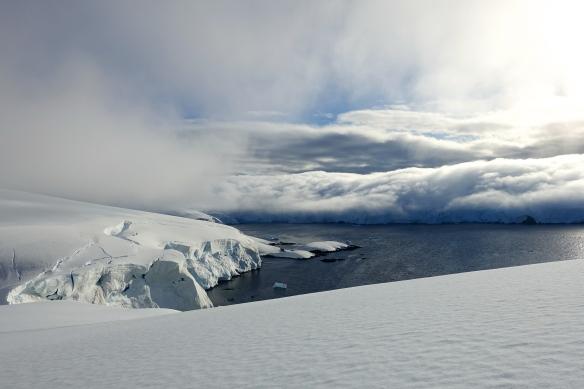 Venus - Antarctique - Entreprise