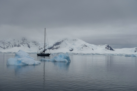 Venus - Antarctique - Almirante Brown
