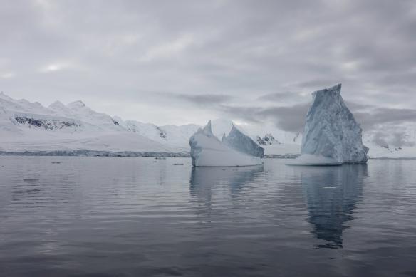 Venus - Antarctique - Dorian Cove