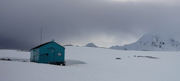 Venus - Antarctique - Dorian Cove - Damoy Hut