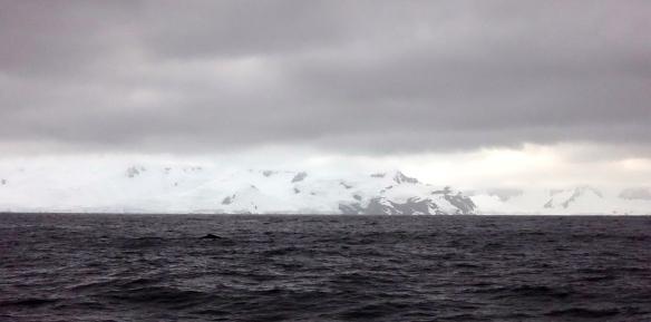 Venus - Antarctique - Départ d'Antarctique